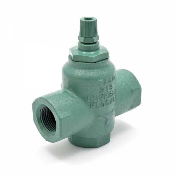 "3/4"" Threaded Cast Iron Flo Check Valve"