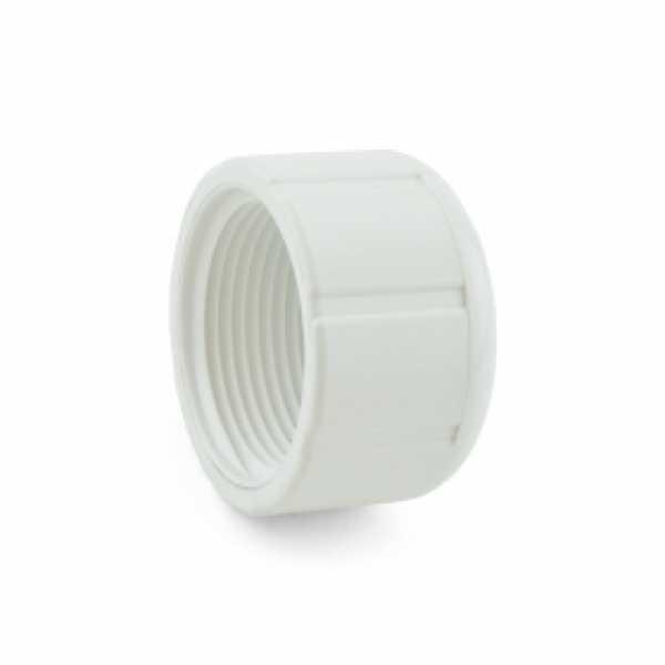 """1"""" PVC (Sch. 40) FIP Cap"""