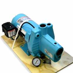 Shallow Well Jet Pump w/ Pressure Switch, 3/4HP, 115/230V, Cast Iron