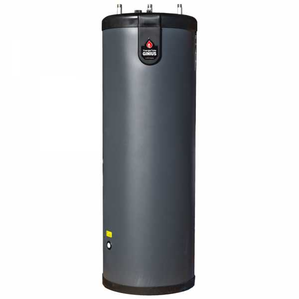 Triangle Tube Ginius 65 Indirect Water Heater, 64-Gallon (w/ Dual Heat Exchanger)